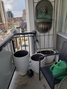 Balcony planter tubs ready plant.